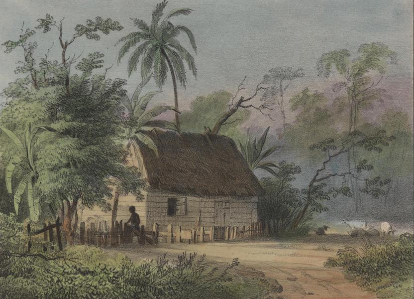 Voyage a Surinam - Habitation de negres (1839)