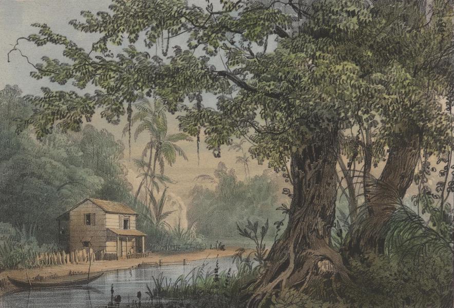 Voyage a Surinam - Combe (1839)