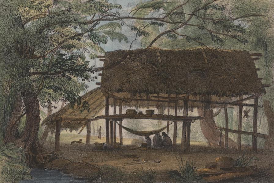 Voyage a Surinam - Un carbet (1839)