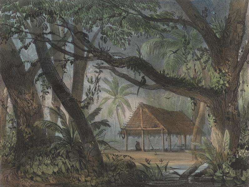 Voyage a Surinam - Interieur d'un carbet (1839)
