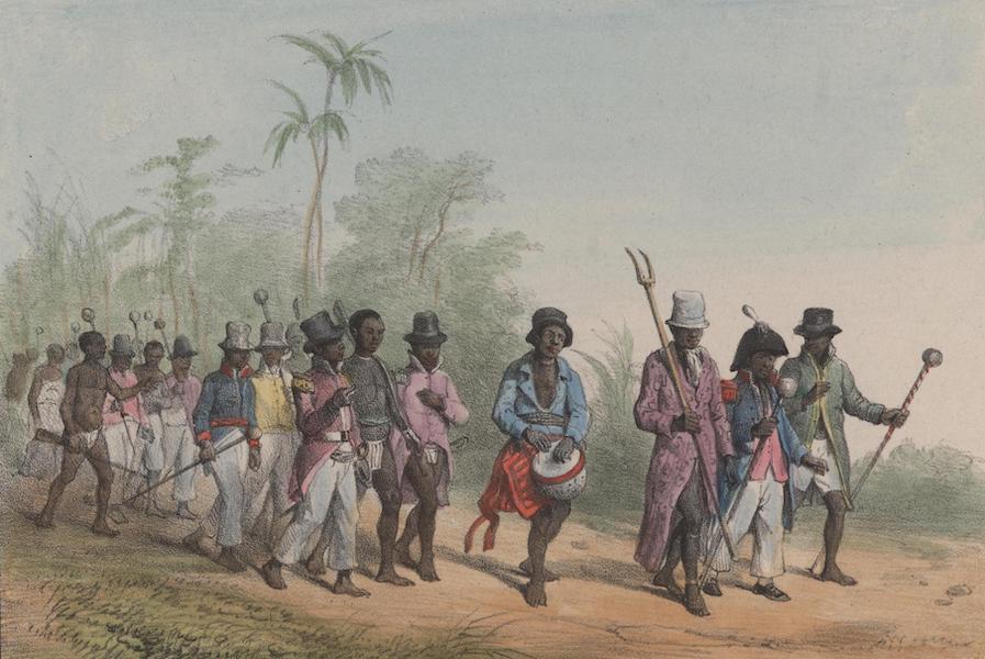 Voyage a Surinam - Une marche (1839)