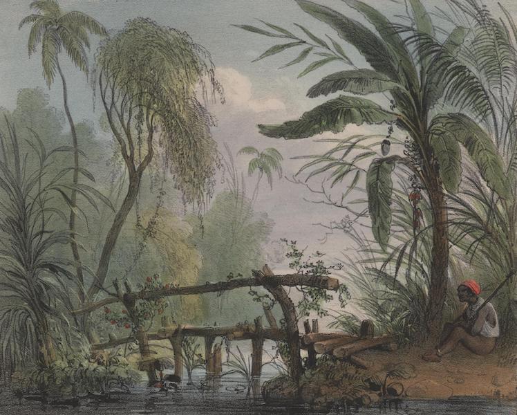 Voyage a Surinam - Un pont garde par un esclave (1839)