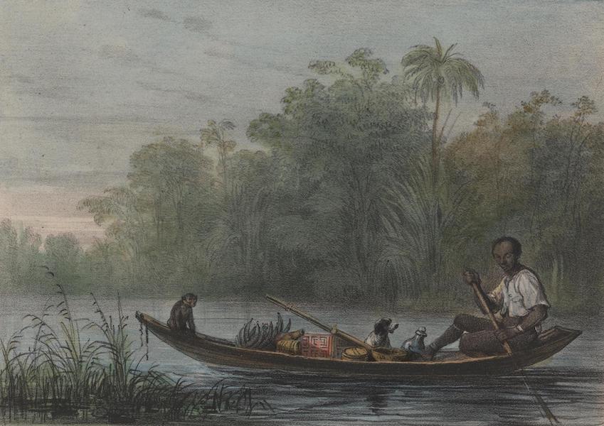Voyage a Surinam - Un canot de negre-marron (1839)