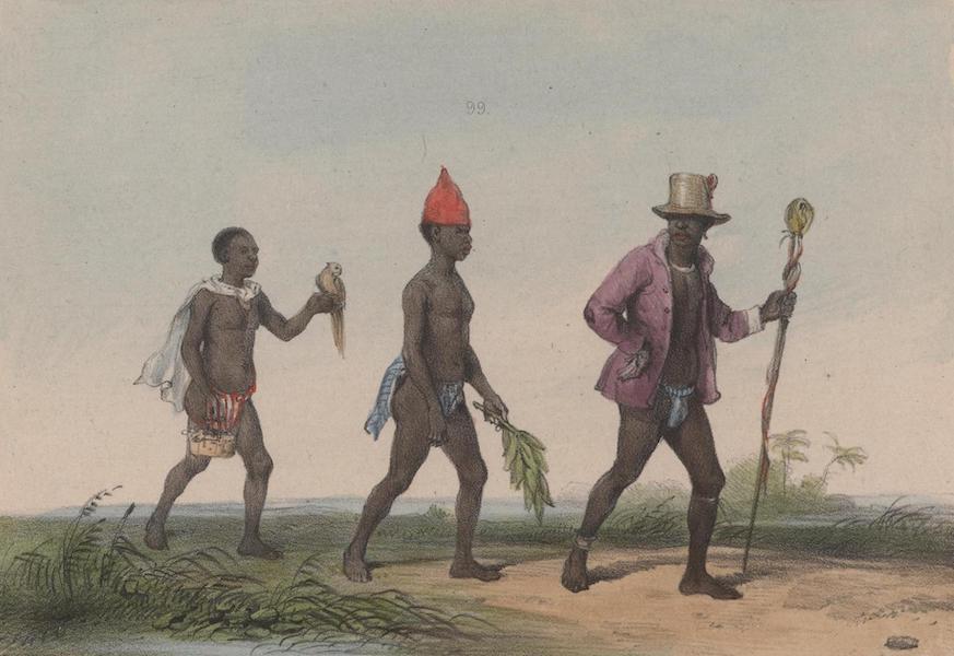 Voyage a Surinam - Un chef en voyage (1839)