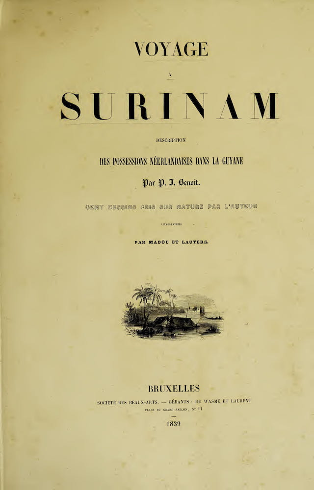 French - Voyage a Surinam