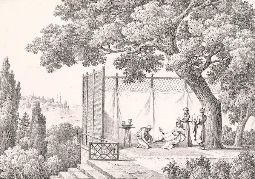 Voyage dans le Levant - Interieur d'un jardin a Constantinople (1819)