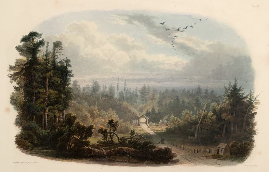 Voyage dans l'Interieur de l'Amerique du Nord Atlas - Wald-Ansicht am Tobihanna, Alleghany-Gebirge. / Forêt sur le Tobihanna, Montagnes Alleghanys. / Forest scene on the Tobihanna, Alleghany Mountains. (1840)
