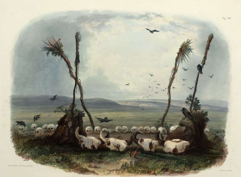 Voyage dans l'Interieur de l'Amerique du Nord Atlas - Opfer der Mandan Indianer. / Offrande des Indiens Mandans. / Offering of the Mandan Indians. (1840)