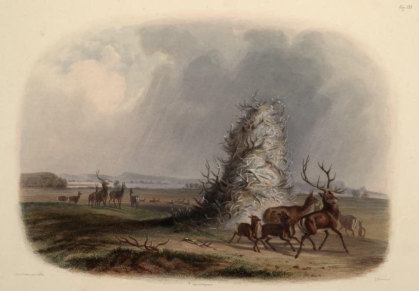Voyage dans l'Interieur de l'Amerique du Nord Atlas - Die Elkhorn-Pyramide am obern Missouri. / La pyramide des cornes d'elk sur le haut Missouri. / The elkhorn pyramid on the upper Missouri. (1840)