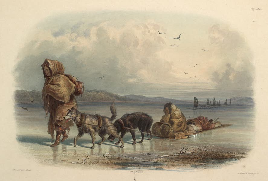 Voyage dans l'Interieur de l'Amerique du Nord Atlas - Hundeschlitten der Mandan Indianer. / Traineaux à chiens des IndienssMandans. / Dog-sledges of the Mandan Indians. (1840)
