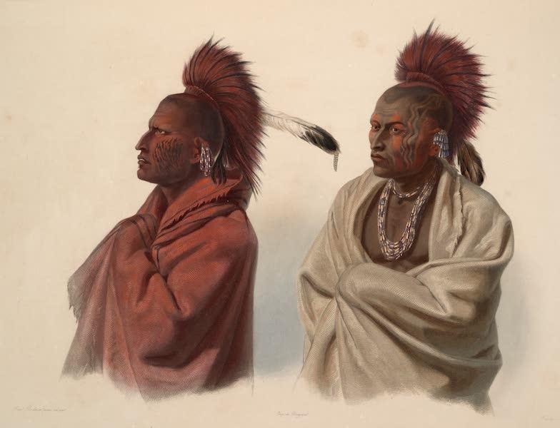 Voyage dans l'Interieur de l'Amerique du Nord Atlas - Mássika, Sáki Indianer. Mássika, Indien Saki. / Mássika, Saki Indian; Wakusásse, Musquake Indianer. / Wakusásse, Indien Musquake (Renard). Wakusásse, Musquake Indian. (1840)