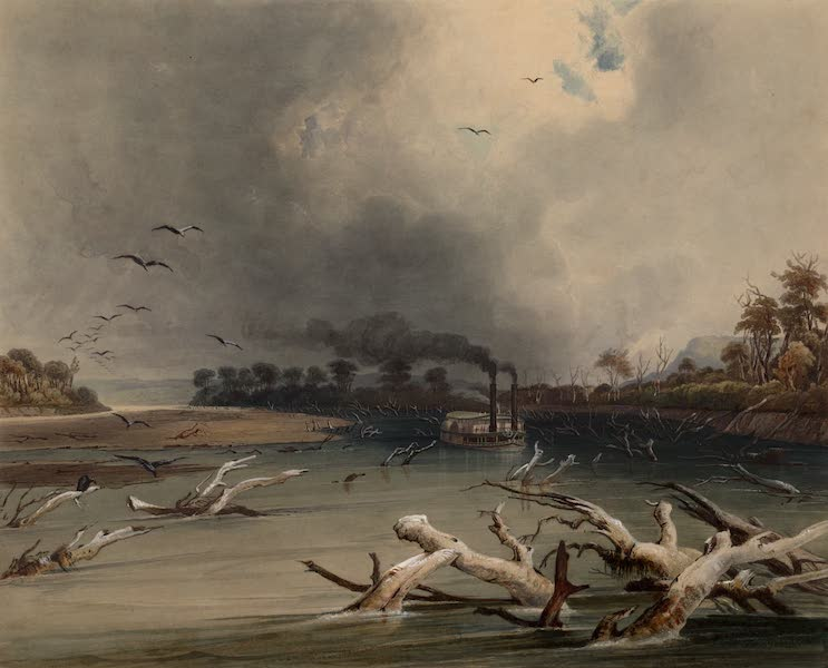 Voyage dans l'Interieur de l'Amerique du Nord Atlas - Snags (im Missouri versunkene Baumstämme). / Snags (troncs d'arbres obstruant le cours du Missouri). / Snags (sunken trees on the Missouri). (1840)