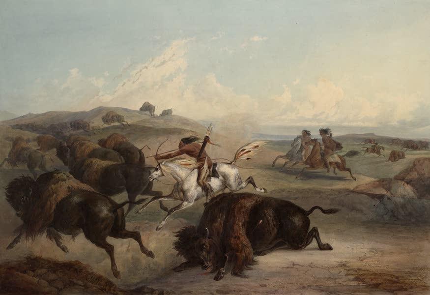 Voyage dans l'Interieur de l'Amerique du Nord Atlas - Indianische Bisonjagd. / Indiens chassant le bison. / Indians hunting the bison. (1840)
