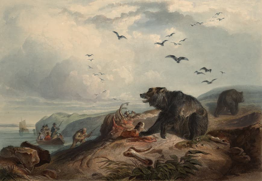 Voyage dans l'Interieur de l'Amerique du Nord Atlas - Jagd auf Grizzly Bären. / Chasse au Grizzly bear. / Hunting of the Grizzly bear. (1840)