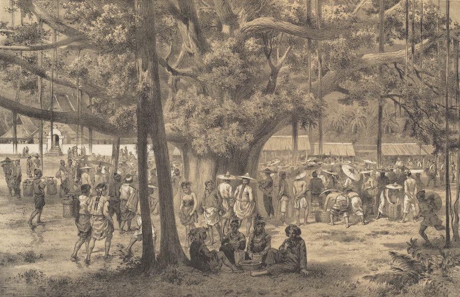 Voyage d'Exploration en Indo-Chine [Atlas-Vol. 1] - Marche de Muong Long (1873)