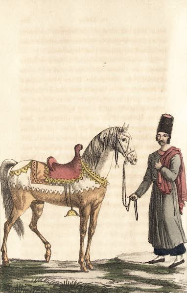 Voyage en Perse Vol. 1 - Cheval du Roi peint de henne (1825)