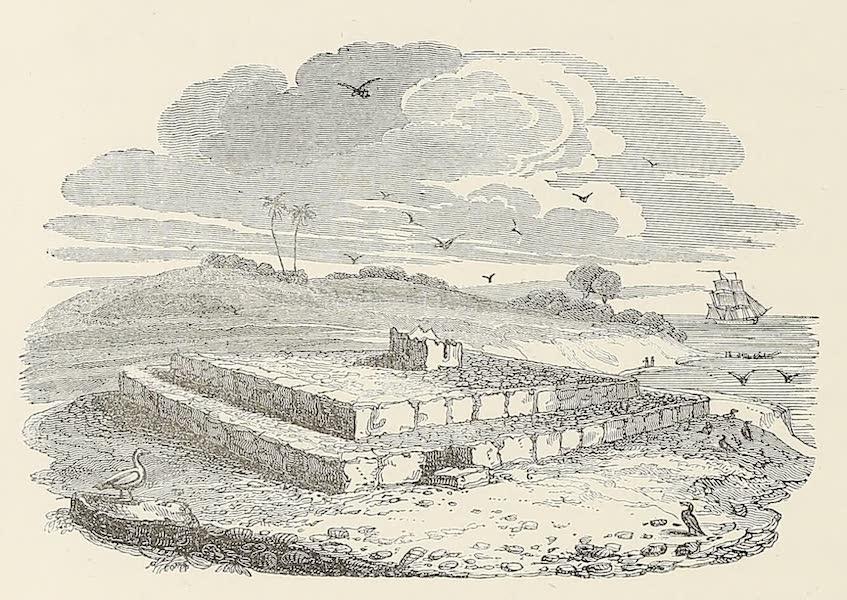 Voyage of H.M.S. Blonde to the Sandwich Islands - Malden's Island (1826)