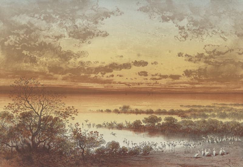 Voyage Pittoresque a Travers l'Isthme de Suez - Foret noyee d'El-Ambak (lacs Amers) (1870)