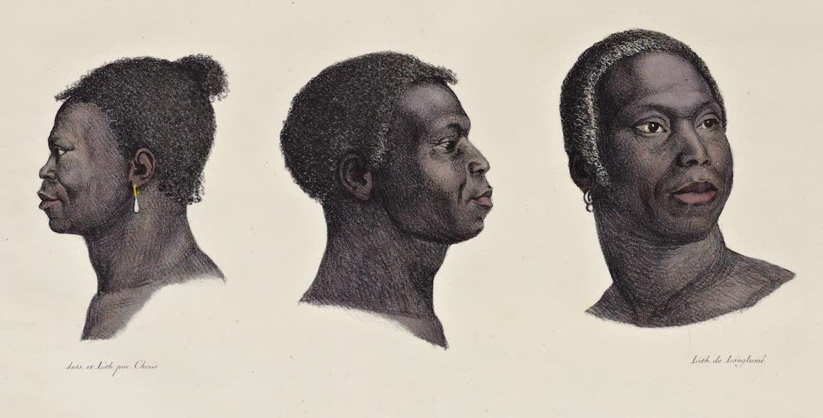 Voyage Pittoresque Autour de Monde - Negres de la Cote d'or (1822)