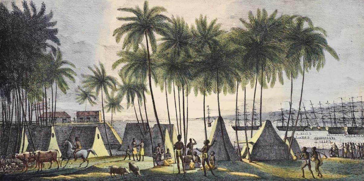 Voyage Pittoresque Autour de Monde - Port d'hanarourou (1822)