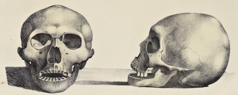 Voyage Pittoresque Autour de Monde - Cranes des haitans des isles Aleoutiennes (1822)