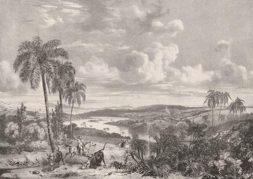 Voyage Pittoresque dans le Bresil - Campos sur les Bords du Rio das Velhas dans la Province de Minas Geraes (1835)