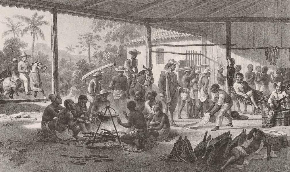 Voyage Pittoresque dans le Bresil - Transport d'une Convoi de Negres (1835)