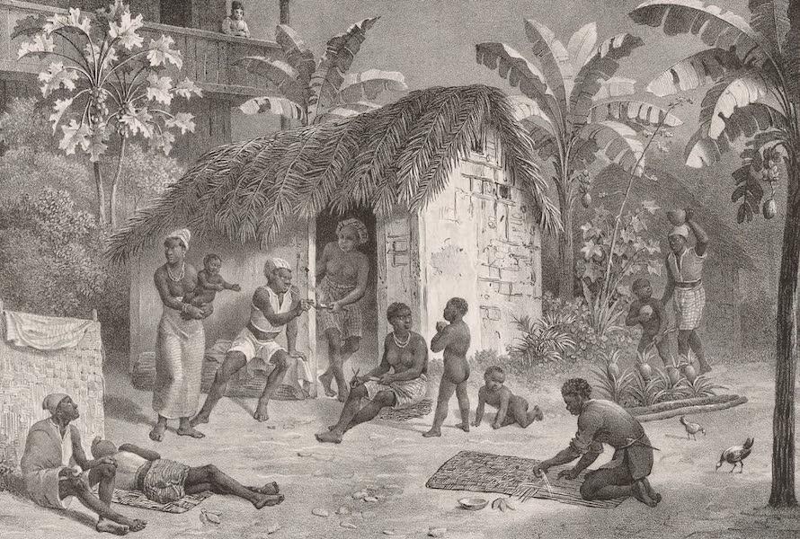 Voyage Pittoresque dans le Bresil - Habitation de Negres (1835)