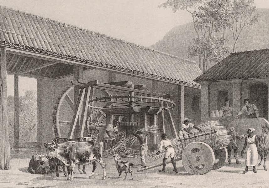 Voyage Pittoresque dans le Bresil - Moulin a Sucre (1835)