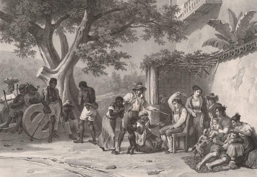 Voyage Pittoresque dans le Bresil - Chatimens Domesiques (1835)