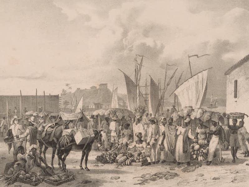 Voyage Pittoresque dans le Bresil - Marche sur la Braia dos Mineros (1835)