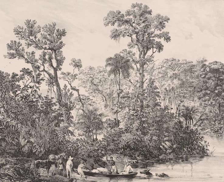 Voyage Pittoresque dans le Bresil - Rio Panahyba [I] (1835)
