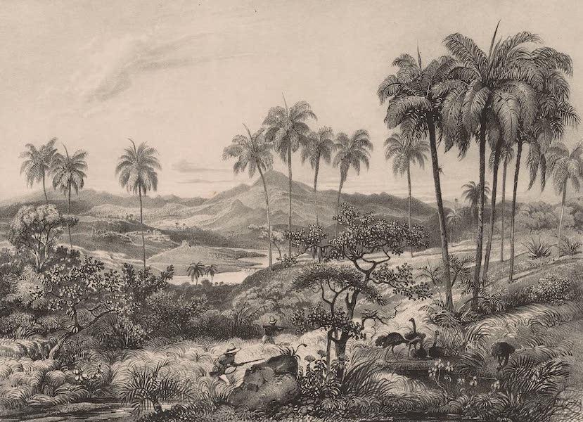 Voyage Pittoresque dans le Bresil - Campos (1835)