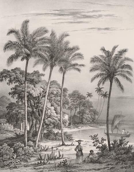 Voyage Pittoresque dans le Bresil - Vue prise sur la Cote pres de Bahia (1835)