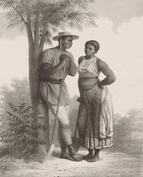 Voyage Pittoresque dans le Bresil - Negre & Negresse dans une Plantation (1835)