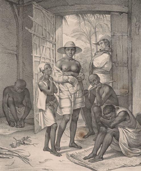 Voyage Pittoresque dans le Bresil - Negros Novos (1835)