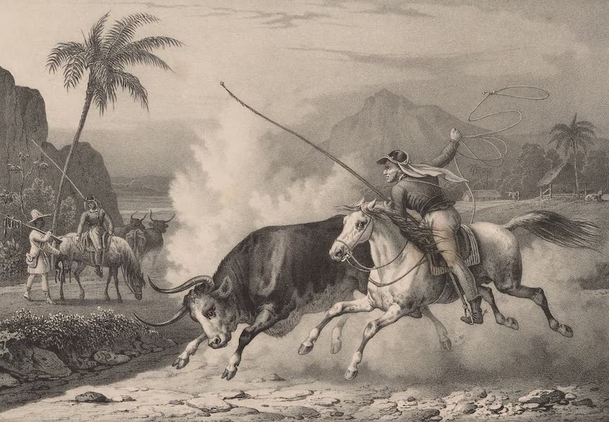 Voyage Pittoresque dans le Bresil - Habitans de Goyaz (1835)