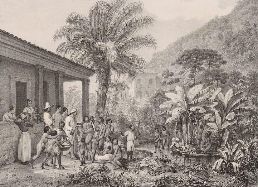 Voyage Pittoresque dans le Bresil - Indiens dans une Plantation (1835)