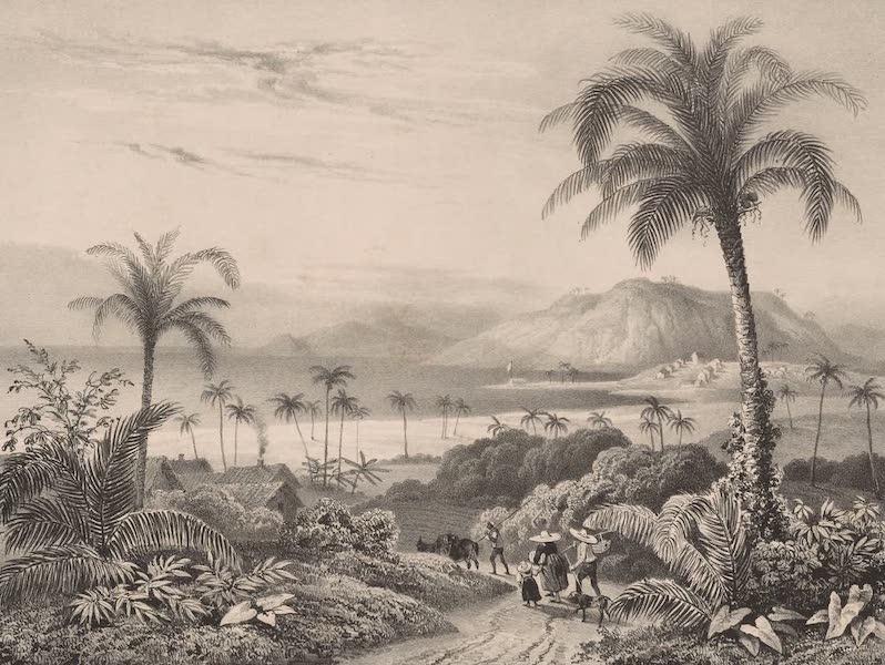 Voyage Pittoresque dans le Bresil - Colonie Europeenne pres de Ilheos (1835)