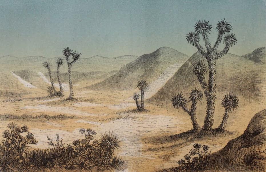Voyage Pittoresque dans les Grands Deserts du Nouveau Monde - Vue du Grand Bassin (1862)