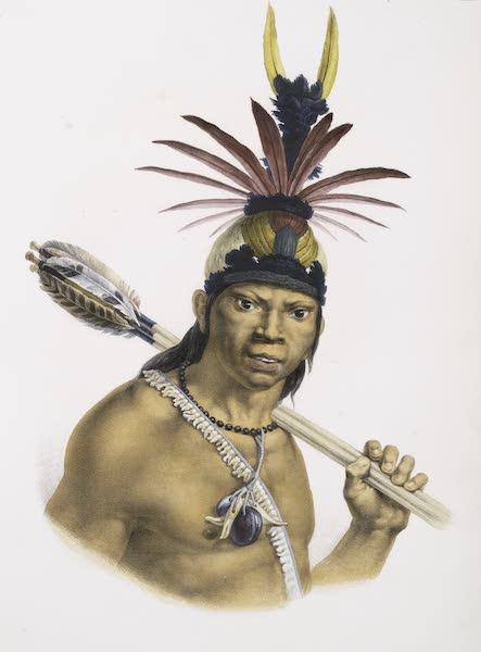 Voyage Pittoresque et Historique au Bresil Vol. 1 - Chef Camacan Mongoyo (1834)