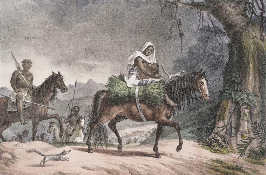Voyage Pittoresque et Historique au Bresil Vol. 1 - Peuplade de Gouaycourous changeant de Paturages (1834)