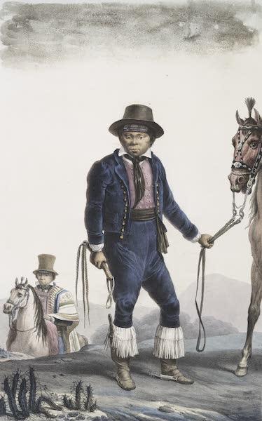 Voyage Pittoresque et Historique au Bresil Vol. 1 - Sauvages Gouaranis Civilises, Riches Cultivateurs de Vignes (1834)