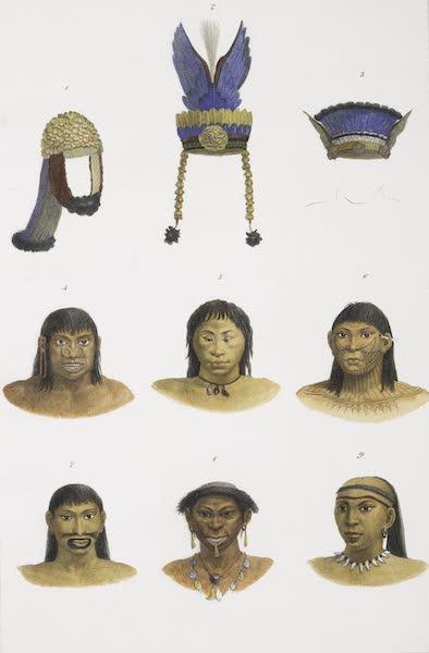 Voyage Pittoresque et Historique au Bresil Vol. 1 - Coiffures, et suite de tetes de differentes Castes Sauvages (1834)