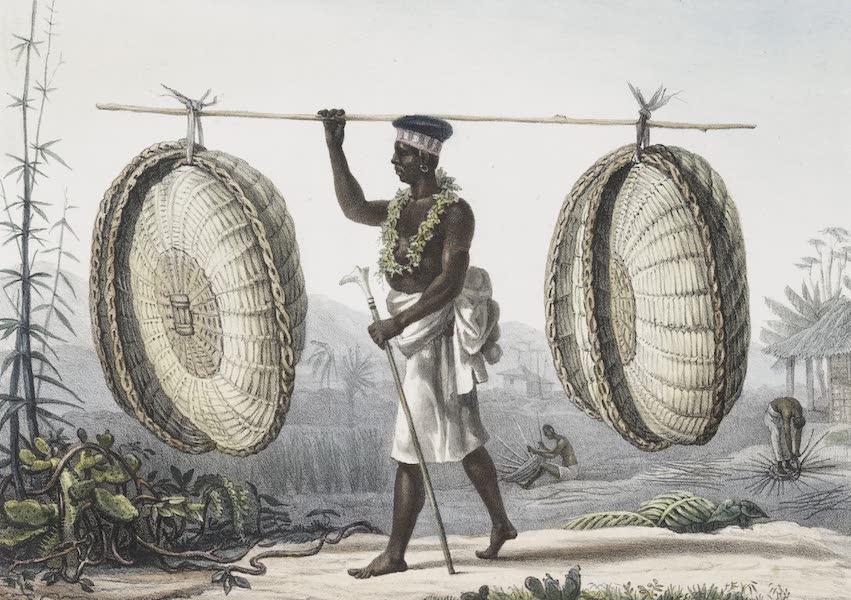 Voyage Pittoresque et Historique au Bresil Vol. 2 - Marchand de Sestes, Paniers qui se portent sur la tete (1835)