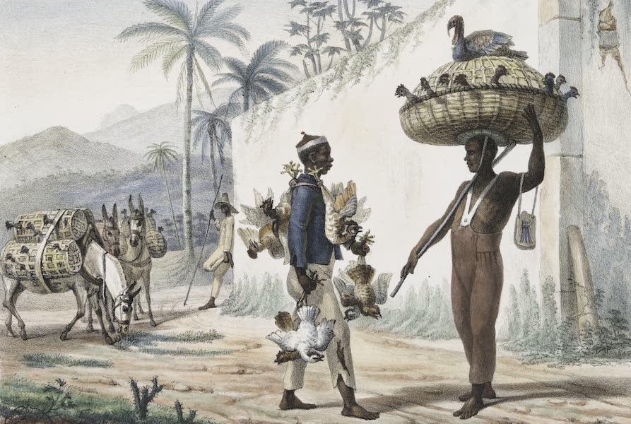 Voyage Pittoresque et Historique au Bresil Vol. 2 - Negre Vendeurs de Volaille (1835)