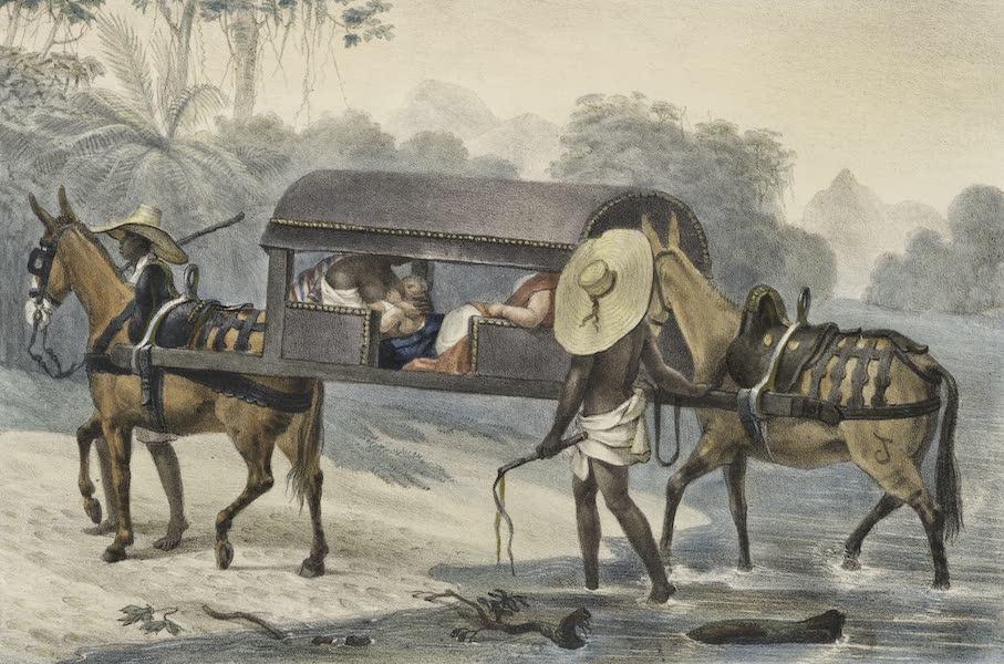 Voyage Pittoresque et Historique au Bresil Vol. 2 - Litière pour voyager dans l'interieur (1835)
