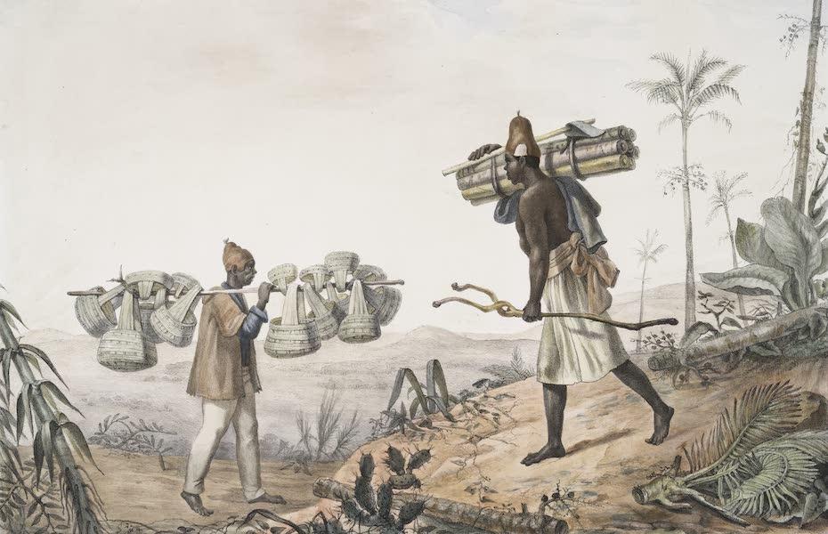 Voyage Pittoresque et Historique au Bresil Vol. 2 - Marchand de Sambouras / Vendeur de Palmito (1835)