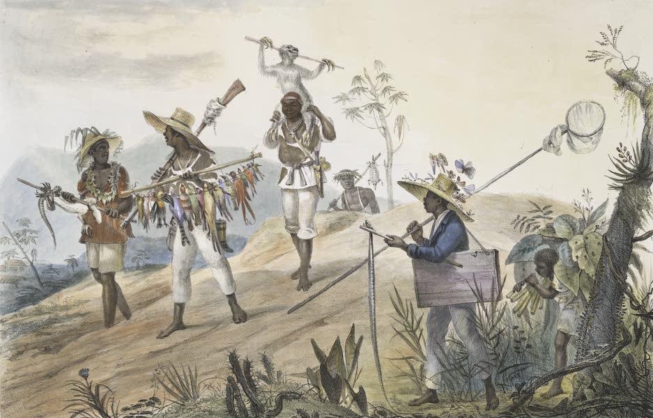 Voyage Pittoresque et Historique au Bresil Vol. 2 - Negres Chasseurs rentrant en Ville / Le retour des Negres d'un naturaliste (1835)