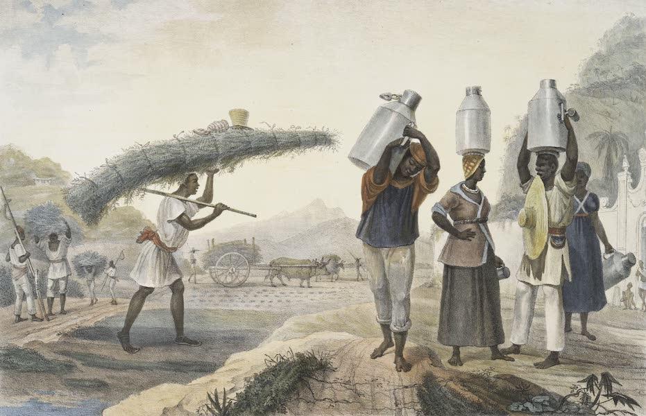 Voyage Pittoresque et Historique au Bresil Vol. 2 - Vendeurs de Lait et de Capim (1835)